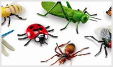 Pest Exterminator Edmonton